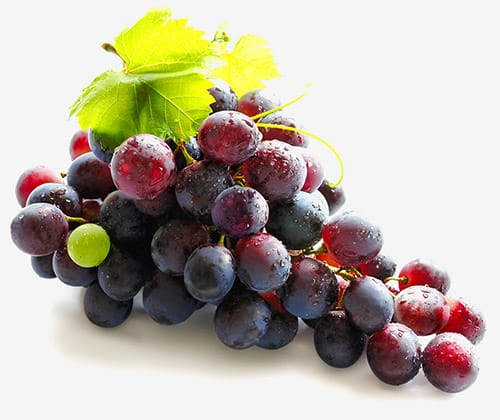 diVINESPA_Grapes_Images1